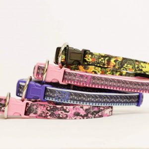 CASUAL CANINE NEOPRENE DOG COLLARS