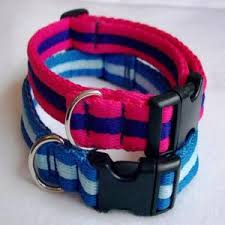eDog Aeroweb Lite Dog Collars